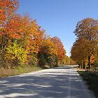 A Fall Drive by Heather Crough