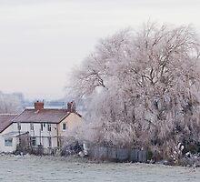 Frost by etunar