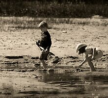 They Play by Robin Webster