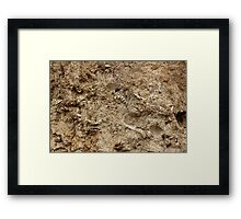 Human Remains Framed Print