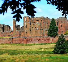 Kenilworth Castle by Morag Bates
