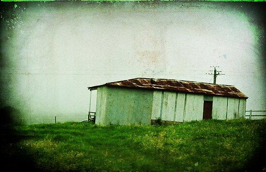 Desolation by Clare Colins