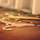 No Wire Hangers by laruecherie