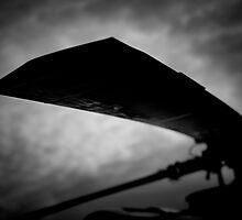 Rotor by dmorto