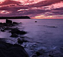 Purple Point by Damon Colbeck