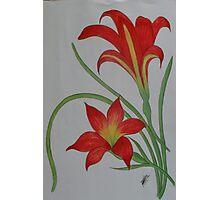 Flower5 Photographic Print