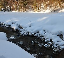 germany, winter brook 2 by Daidalos