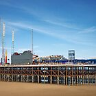 Blackpool Pier by Denise Wainwright