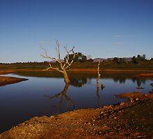 Flinders Dusk by PaulaKlavins