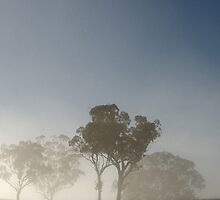 Misty morning 2 by Candice84
