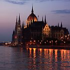 Hungarian Parliament Building at night by Anatoly Lerner