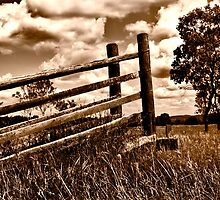 Loading Ramp by Kathryn Steinhardt