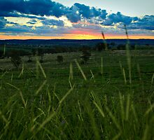 The Sun Sets on Another Rumble_Junee by Sharon Kavanagh