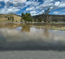 ...of Droughts and Flooding Rains by GailD