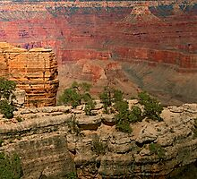 The Grand Grand Canyon - Southern Rim - 8 © by © Hany G. Jadaa © Prince John Photography