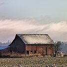 Old Barn by Mike  Kinney