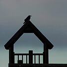Crow on Tower by Andy Merrett