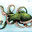 Green Octopus by dsilva