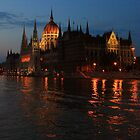 Hungarian Parliament Building at night #2 by Anatoly Lerner