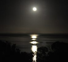Moon setting over the water in the early hours of the morning by Ian Berry