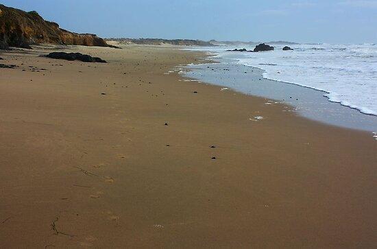 Myspace Dot Earth. Panther Beach, California 2012 by Igor Pozdnyakov