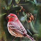 Little Bird IV (Art &amp; Poetry) by Rhonda Strickland