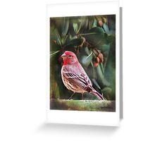 Little Bird IV (Art & Poetry) Greeting Card