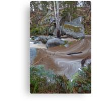 Bryan's Creek Swirl Canvas Print