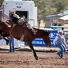 The Rodeo by gernerttl