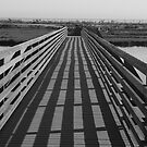 Bridge at The Bolsa Chica Wetlands 2 by arr333