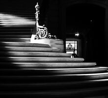 The light on the stairs of power – San Francisco City Hall by Uri Z. Fogel