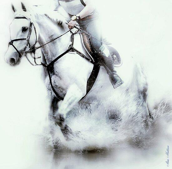White water ride by Alan Mattison