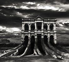 Tree Mansion by Adrian Merrigan