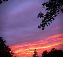 Sunset I by DEGS14