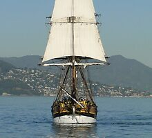 Replica Ahoy! by Barrie Woodward
