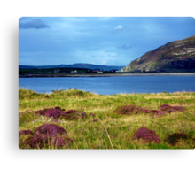 Hills And Heather Canvas Print