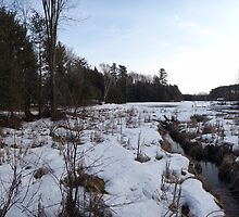 O'Hara  Mills Conservation Area by Les Wazny