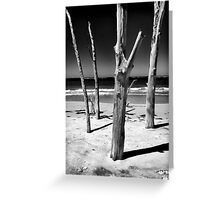 Skeketon Tree, Sarasota 2012 Greeting Card