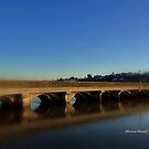 Bideford Bridge by Charmiene Maxwell-batten