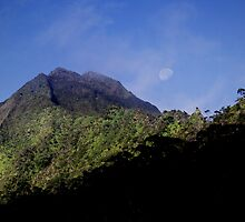 Sunrise At Nu'uanu Pali Lookout 2 by Alex Preiss