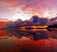 Bushland Beach Sunrise by Stephen  Nicholson