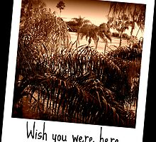 Wish you were here by AuntDot