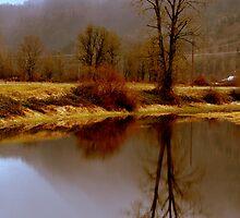 Edge of Spring by Jean Poulton