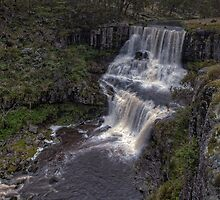 Upper Ebor Falls • NSW • Australia by William Bullimore