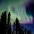 March 9th/12...Morning Auroras by peaceofthenorth
