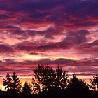 October Sky by sketchpoet