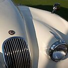 1954 Jaguar XK 120 SE Roadster Grille by Jill Reger