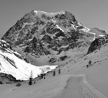 Mont Collon by itchingink