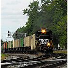NS 8840..We're goin' up around the bend by jammingene