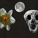 Death And The Daffodil  by Eric Kempson